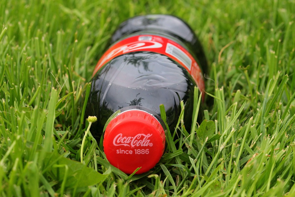 Sustainability Project with Coca-Cola Austria